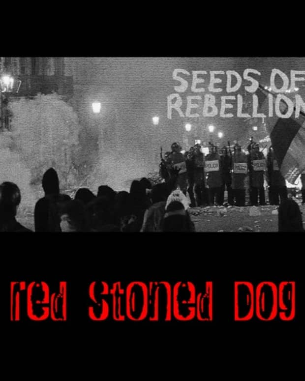 synth-single-review-red-stoned-dog-seeds-of-rebellion