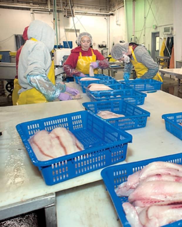 top-alaska-seafood-processing-companies-hiring-for-summer