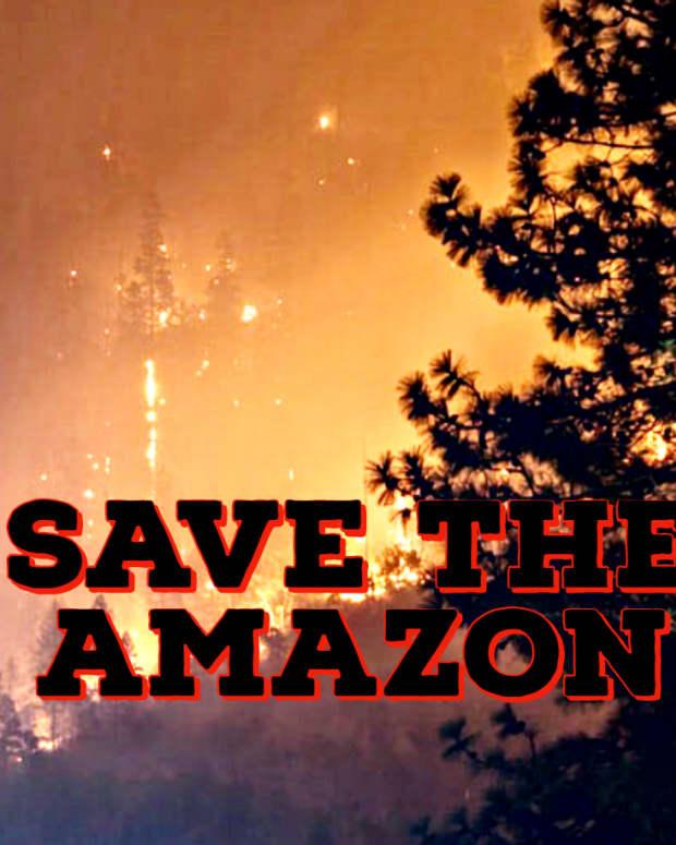 save-the-amazon