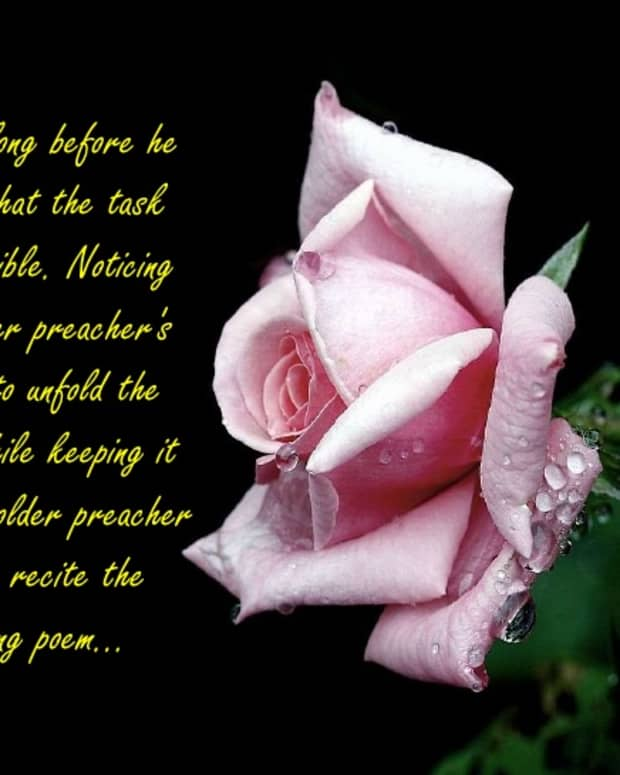 i-wish-to-be-a-lover-with-you-as-my-rose