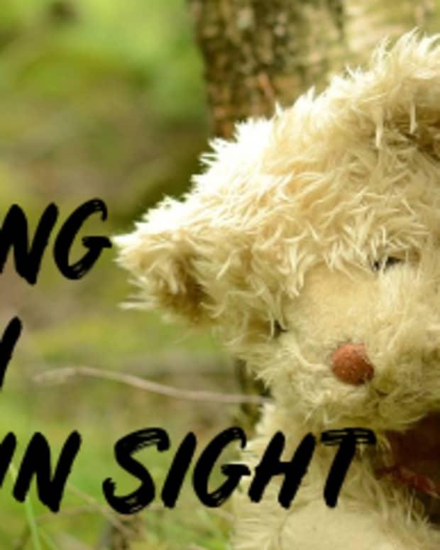 poem-hiding-in-plain-sight
