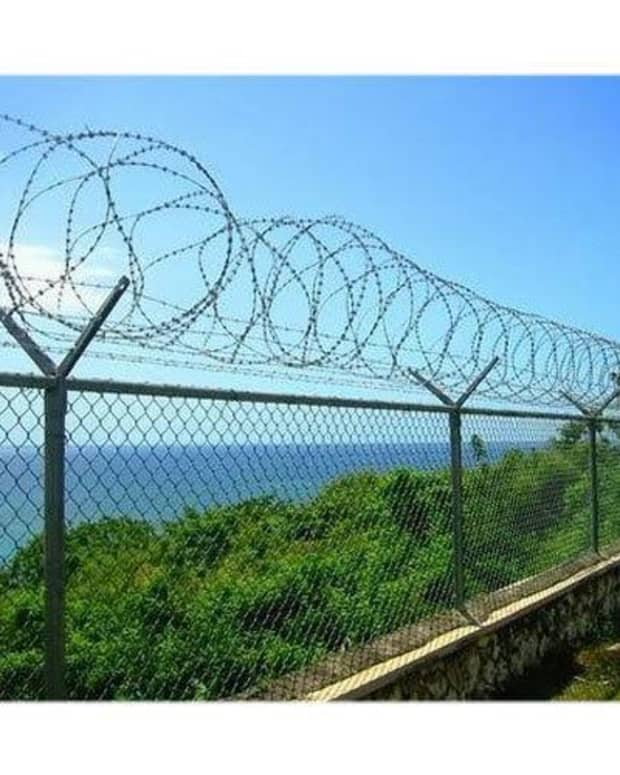 barbed-fence