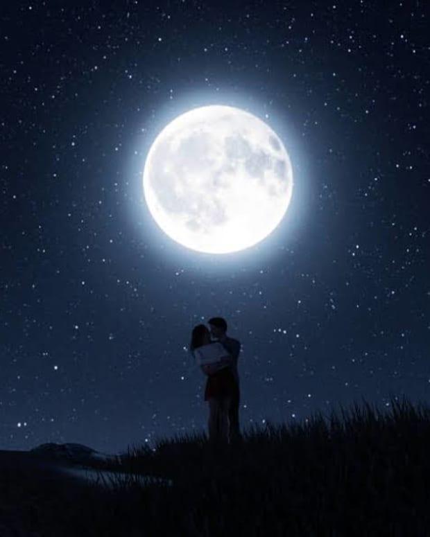 basking-in-moonlight