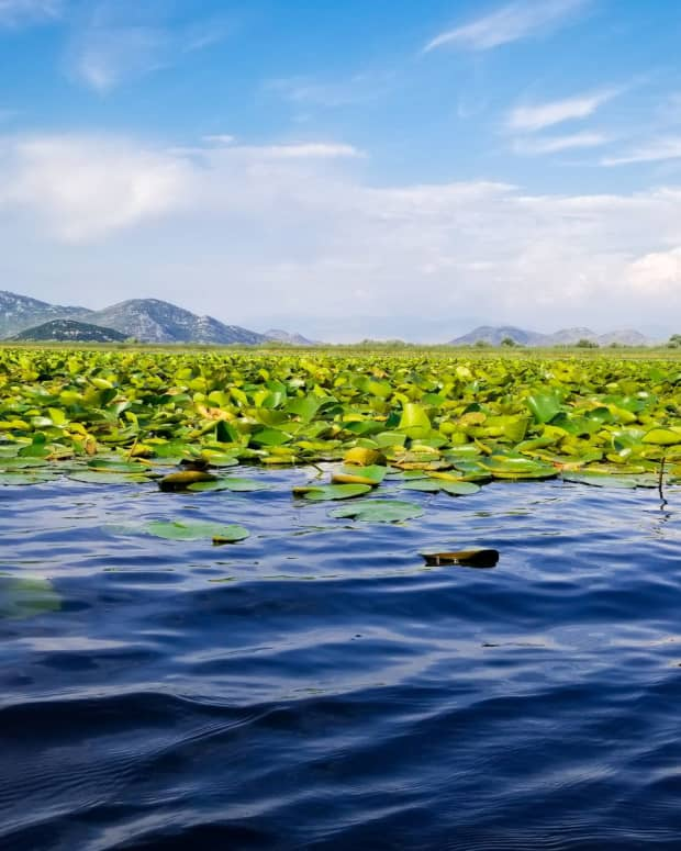 a-lake-of-two-cities-skadar-and-shkodr