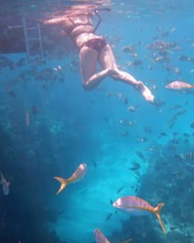 best-places-to-snorkel-corral-reefs-in-florida