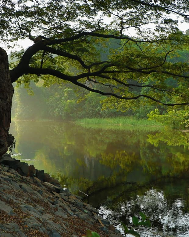 the-river-knows-a-poem-in-the-style-of-seamus-heaney