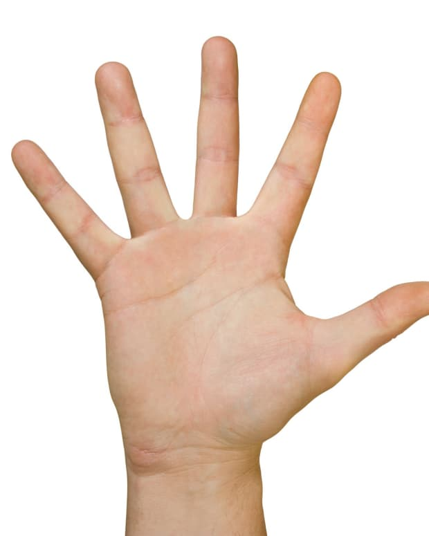 the-rigid-hand