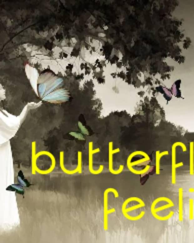 poem-butterfly-feeling