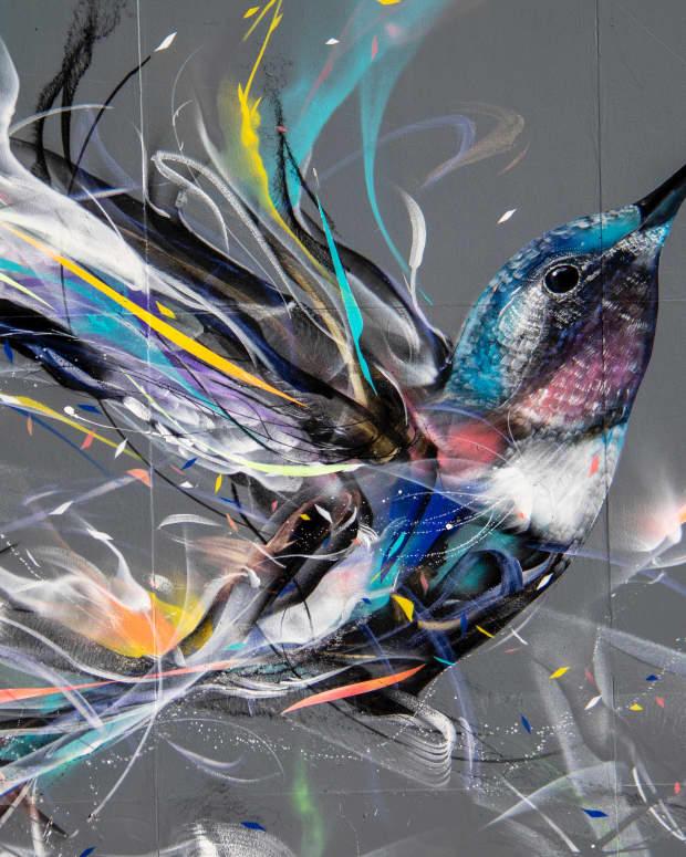 hummingbirds-haiku