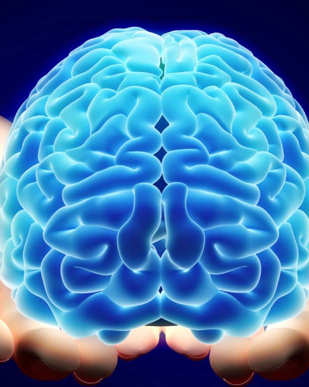 evolve-the-power-of-the-mind