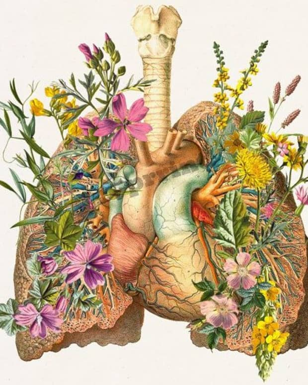 a-single-breath