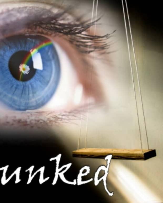 debunked-a-serialized-novel-part-1
