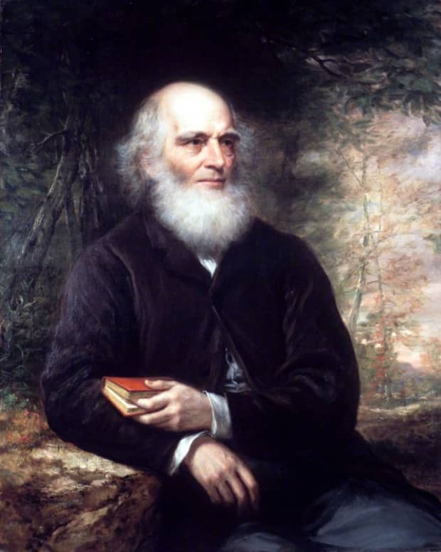 """William Cullen Bryant's """"The Yellow Violet"""""""