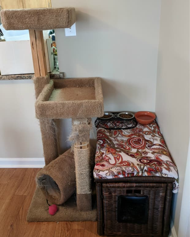 ikea-hack-diy-your-own-cat-litter-box-cover-from-a-wicker-hallway-box