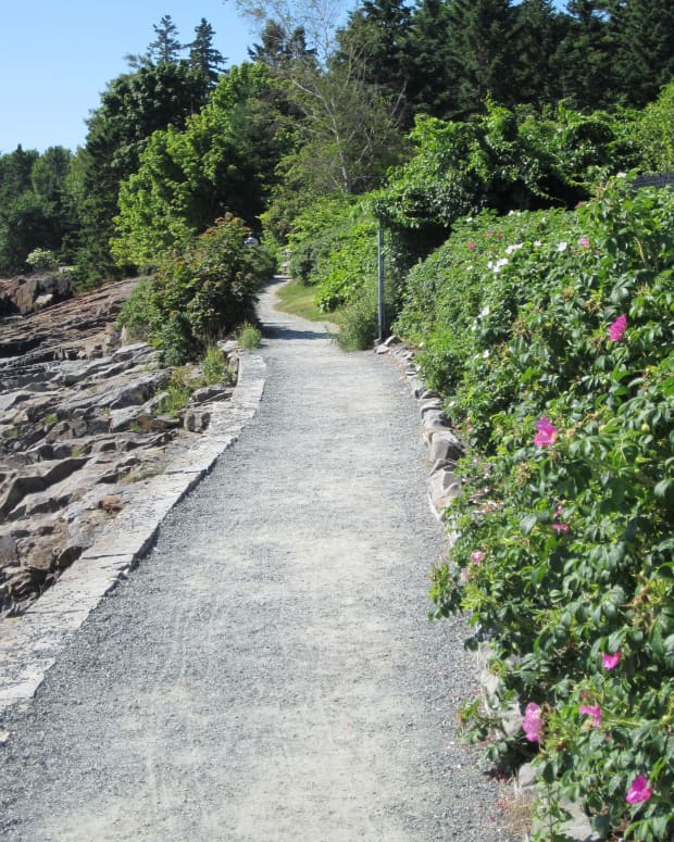 x-fun-and-easy-hikes-in-and-around-acadia-national-park