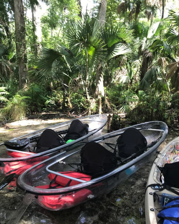 is-the-clear-kayak-tour-in-florida-really-worth-it