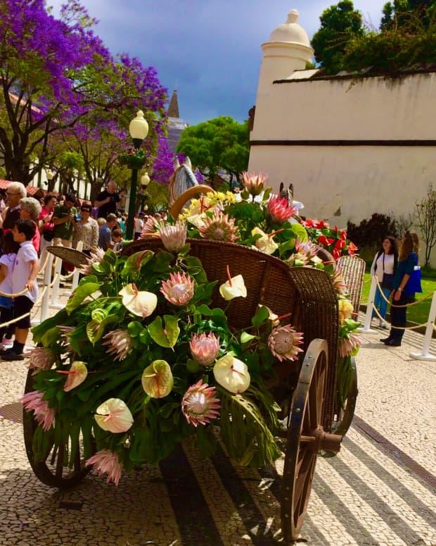 madeiras-wine-and-flower-festival-september