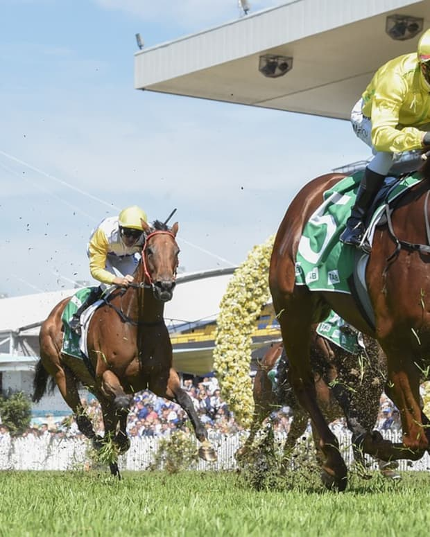 mistreatment-of-race-horses
