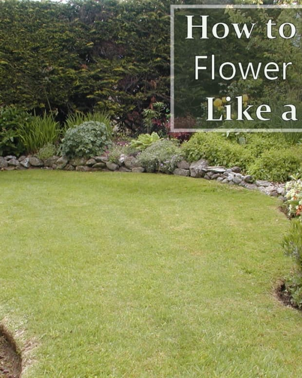 how-to-edge-a-flower-bed