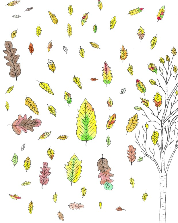 fall-is-quiet-on-my-mind