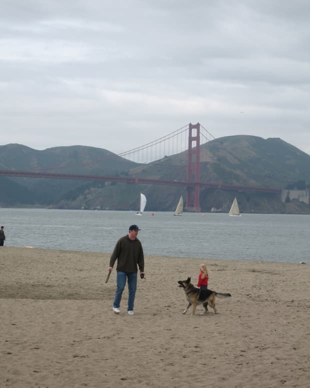 top_5_things_to_do_in_san_francisco_with_a_toddler