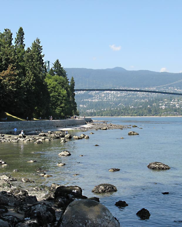 a-summer-nature-walk-in-stanley-park-vancouver