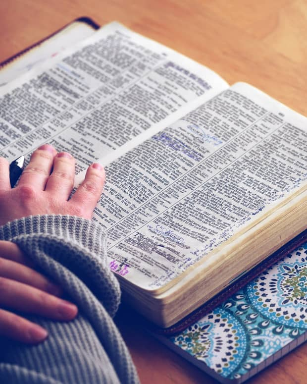 funny-stories-or-verses-in-the-bible