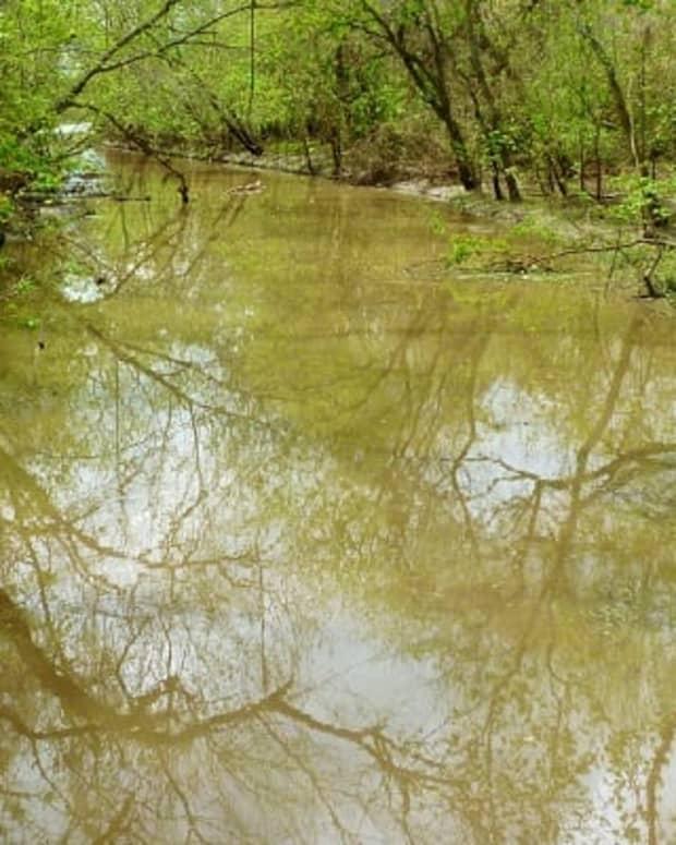 lost-creek-park-great-recreation-area-in-sugar-land-texas