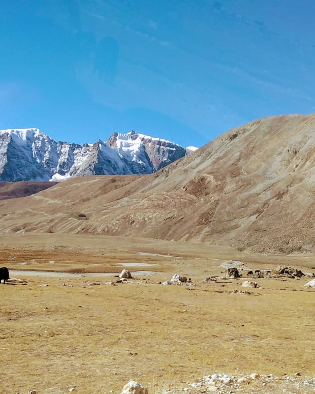 en-route-gurudongmar-lake-lonely-roads-arid-terrain-snow-clad-mountains-yaks-and-us-an-exhilarating-experience