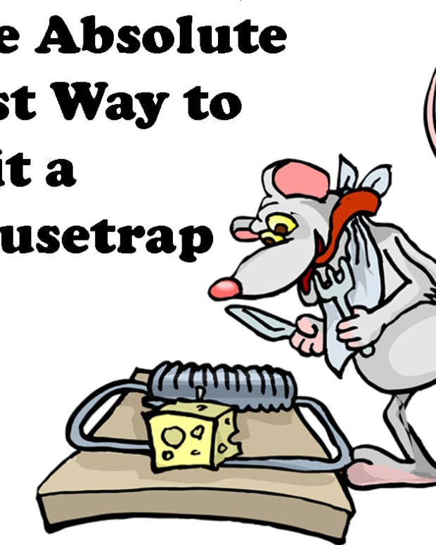 best-way-to-bait-a-mousetrap