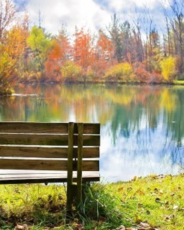 meditation-methods-similar-benefits-dissimilar-focus