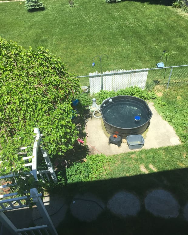 how-to-build-a-stock-tank-pool