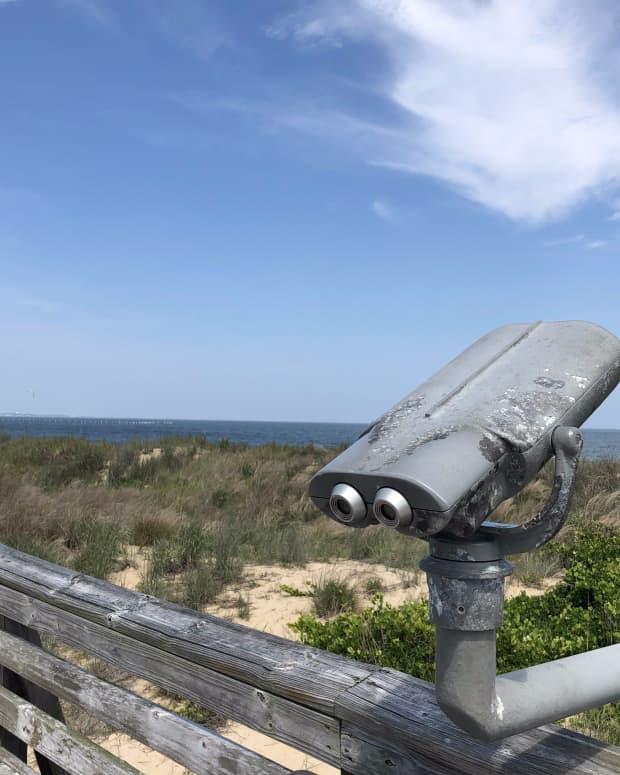 finding-light-and-seashells