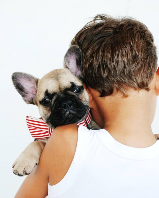 15-least-aggressive-dog-breeds
