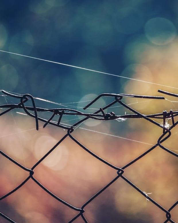 cobwebs-true-social-outcasts