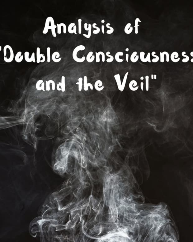 analysis-of-web-du-bois-double-consciousness-and-the-veil
