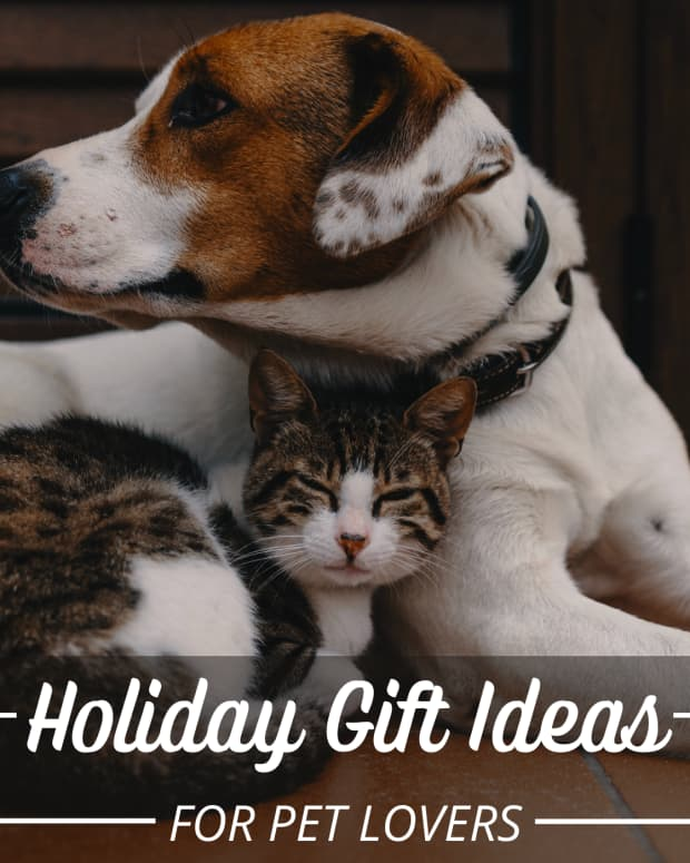 christmas-gift-ideas-for-the-pet-keepers-in-your-life
