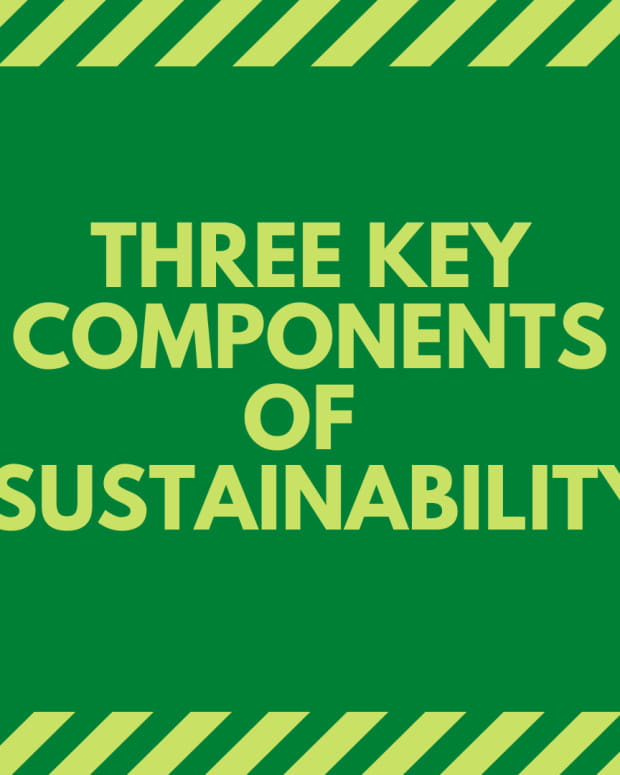 the-environmental-economic-and-social-components-of-sustainability