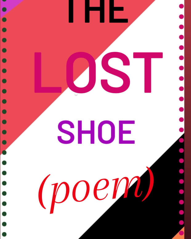 the-lost-shoe