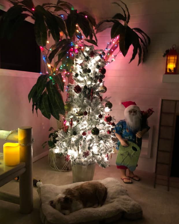 why-im-leaving-up-my-christmas-tree