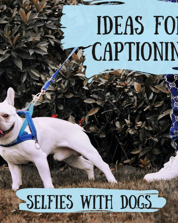best-captions-for-selfies-with-dogs