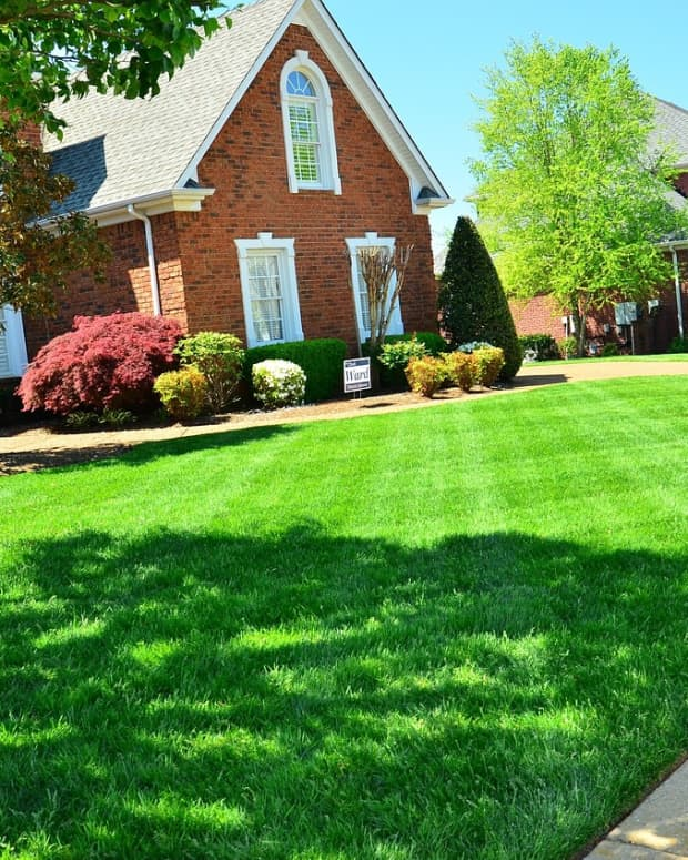 a-practical-guide-to-mowing-your-lawn-like-an-expert
