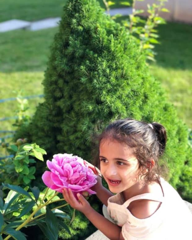 poem-she-is-the-personification-of-innocence