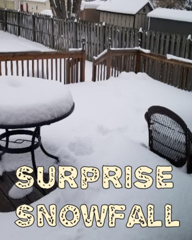 poem-surprise-snowfall