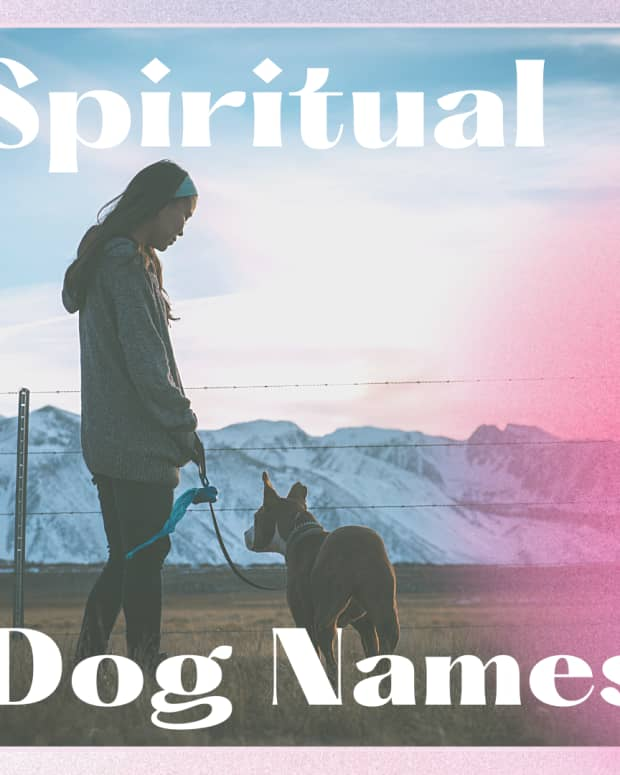 meaningful-mystical-and-spiritual-names-for-dogs