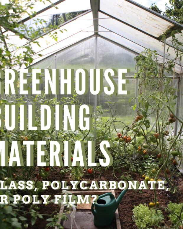 greenhouse-glass-guide