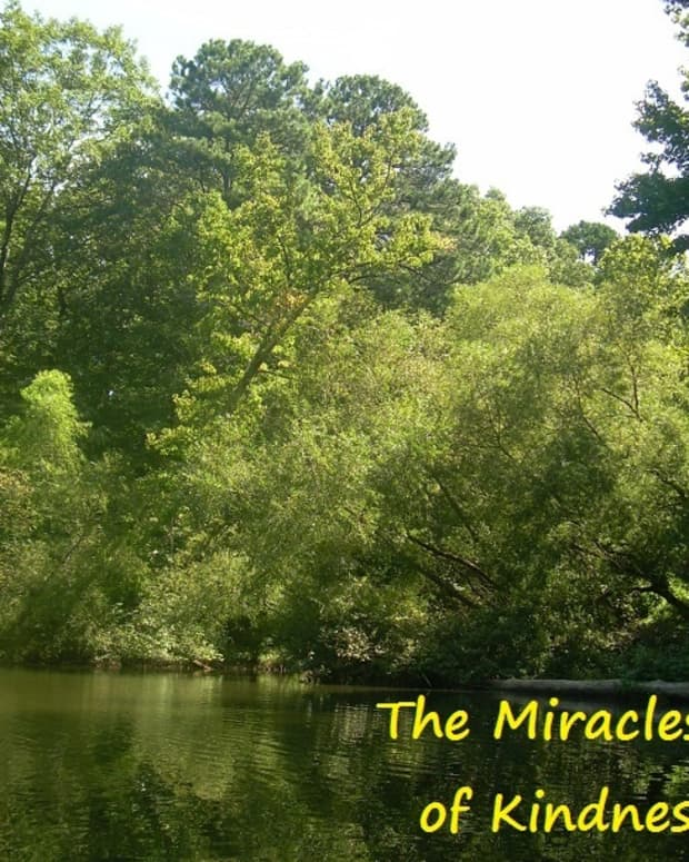 the-miracle-of-kindness