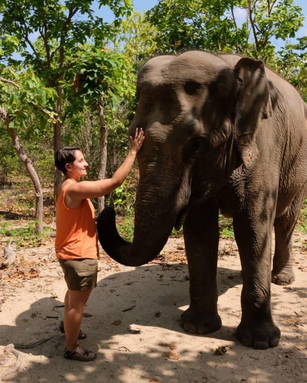 visiting-phnom-tamao-wildlife-rescue-center-cambodia