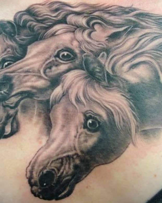 horse-tattoos