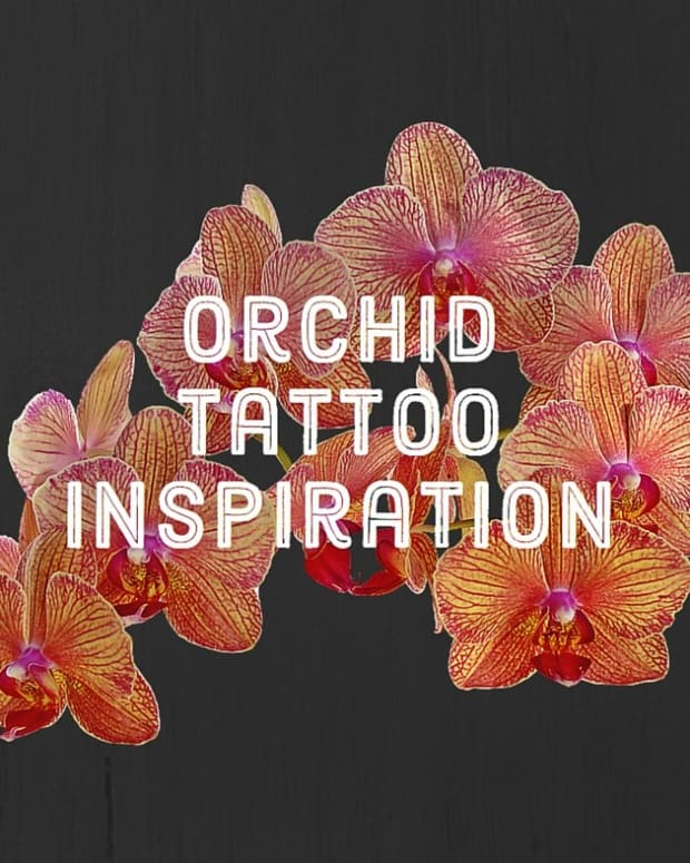 orchid-tattoos-and-meanings-orchid-tattoo-designs-and-ideas